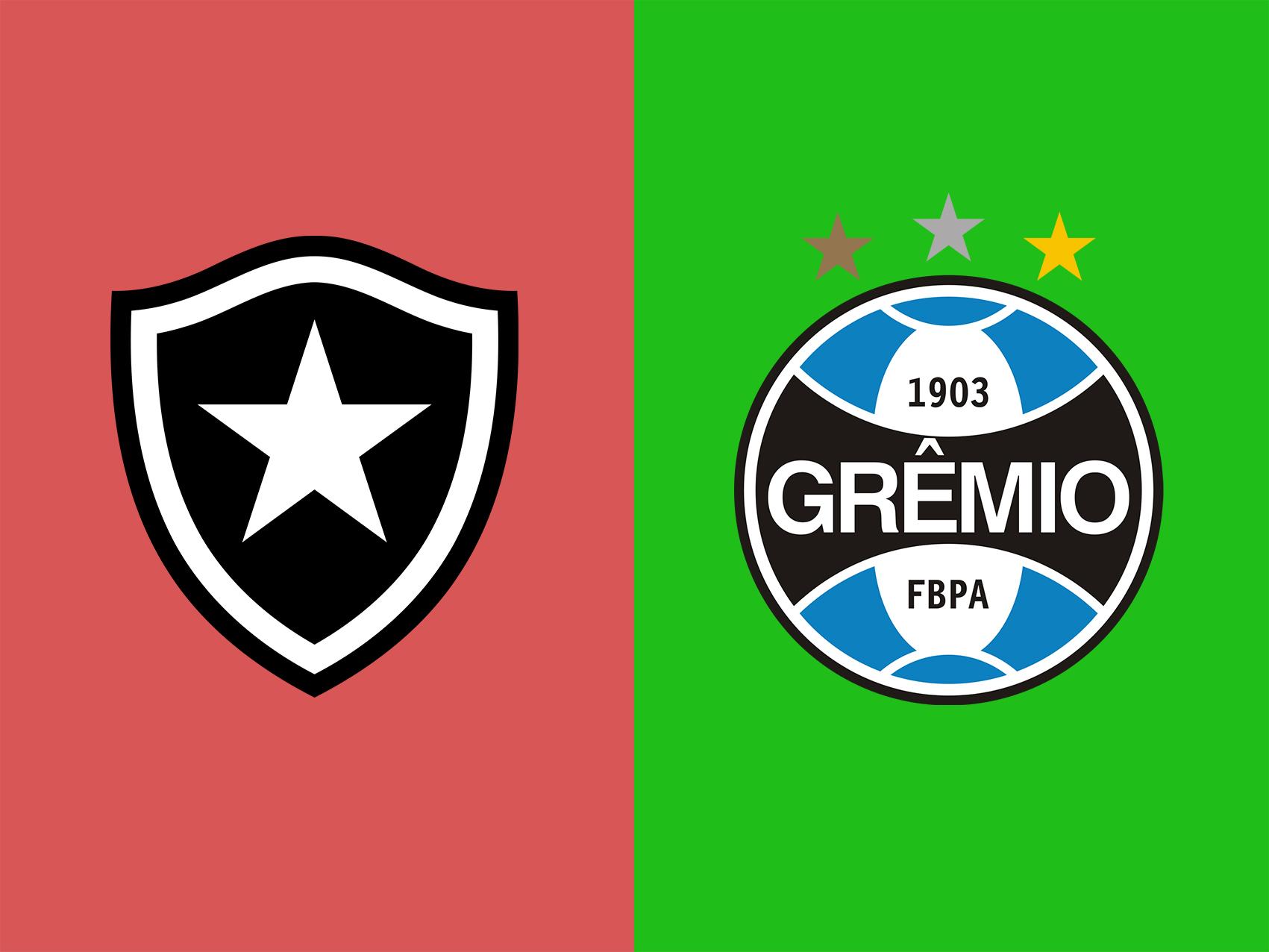 botafogo-vs-gremio-soi-keo-vdqg-brazil-13-06-giot-le-dang-cay-0